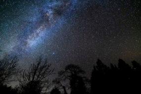 Bäume unter dem Sternenhimmel im Galloway Forest Park